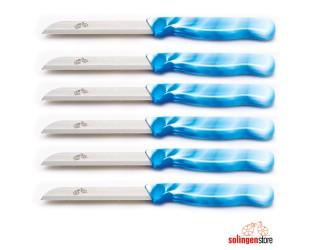 6 lı Meyve Bıçağı - Mavi